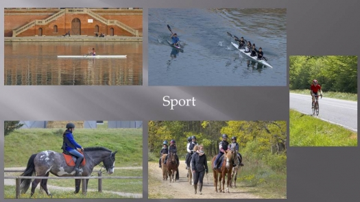 picture of Photography and Sports