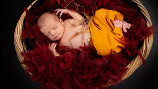 picture of Photography and Newborns