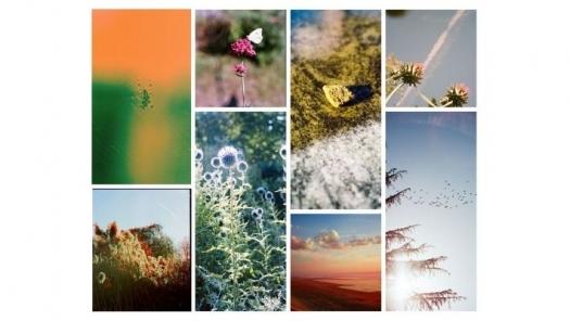 Image de Photographie et Nature